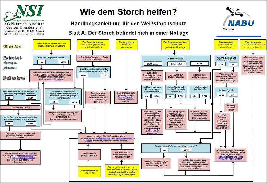 Storch in Not